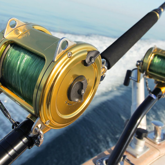 Sport Fishing Packages by The Proper Knot
